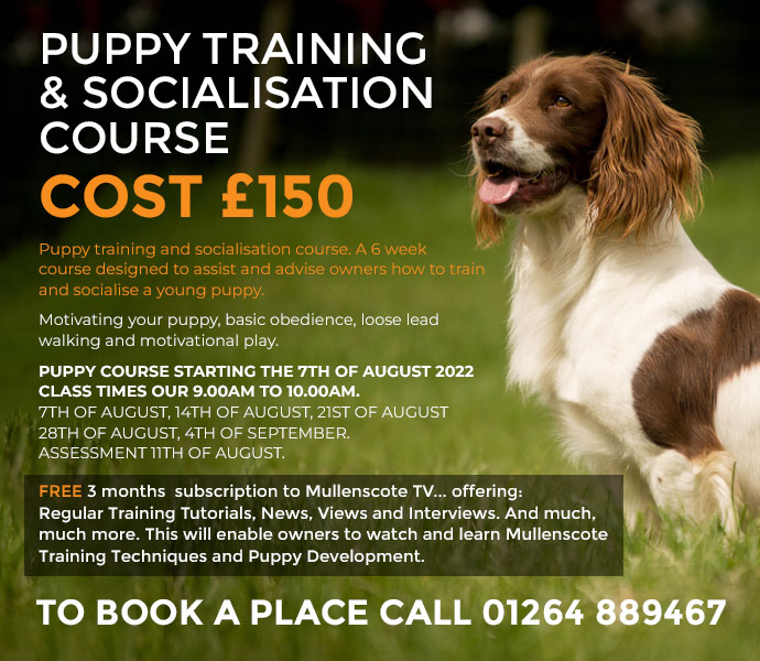 brand new puppy training and socialisation course